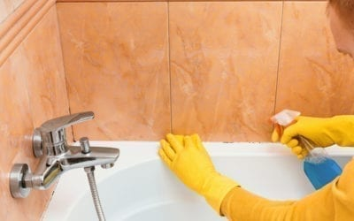 Is It Possible To Have A Mould-Free Bathroom?